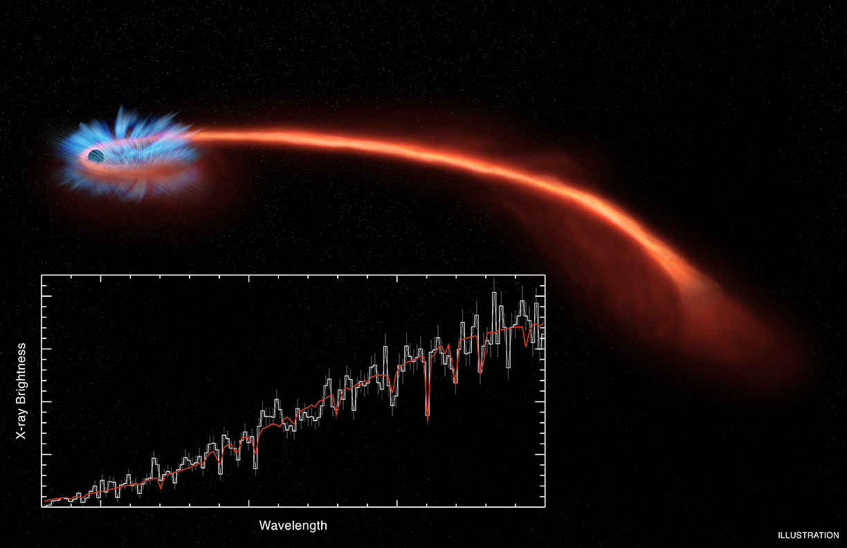Astronomers have observed material being blown away from a black hole after it tore a star apart, as reported in our press release. This event, known as a